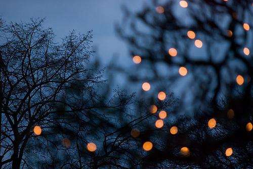 dark-fairy-lights-fairylights-lights-night-Favim.com-224386